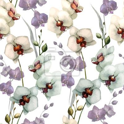 Schöne Orchidee flower5