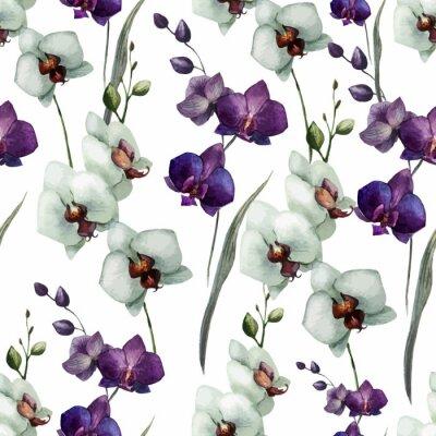 Schöne Orchidee flower7