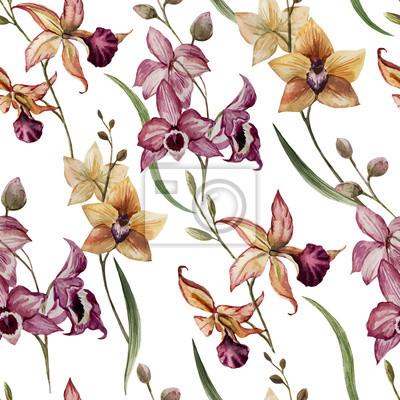 Schöne Orchidee flower8