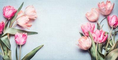 Sticker Schöne Tulpen in der rosa Pastellfarbe auf hellblauem Hintergrund, Draufsicht, Rahmen, Grenze. Schöne Grußkarte mit Tulpen für Muttertag, Hochzeit oder Happy Event