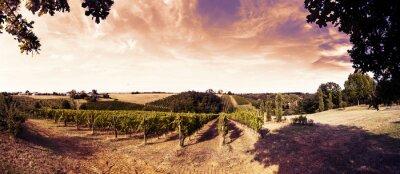 Sticker Schönen Sonnenuntergang über den Weinbergen in der Toskana