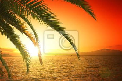 Schöner Sonnenuntergang