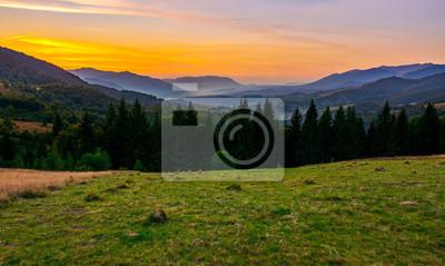 schöner Sonnenuntergang in den Karpatenbergen. Blick ins nebelige Tal des Synevyr Nationalparks. Reihe der Fichtenbäume auf der Wiese im Vordergrund