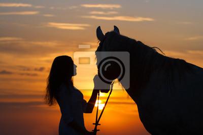 Schönes Pferd mit Mädchen Silhouette auf Sonnenuntergang