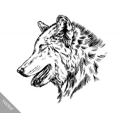 Sticker Schwarz-Weiß-Gravur isoliert Wolf