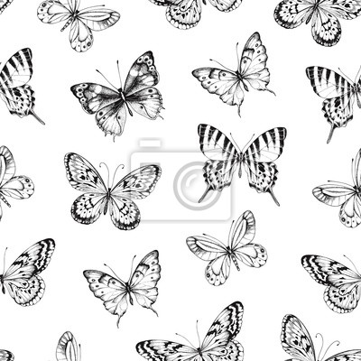Seamless pattern of hand drawn silhouette butterflies. Vector illustration in vintage style on white background.