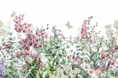 Sticker seamless rim. Border with Herbs and wild flowers, leaves. Botanical Illustration Colorful illustration on white background. Spring composition with butterfly