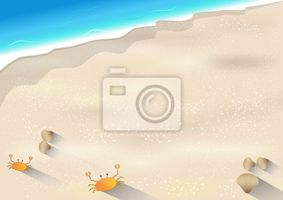 Seascape vector illustration,crabs and shells on the beach background.