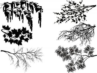 Sticker Sechs Frühjahr Baum Zweige auf weiß