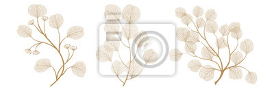 Sticker Set branches with leaves eucalyptus. Vector illustration. EPS 10.