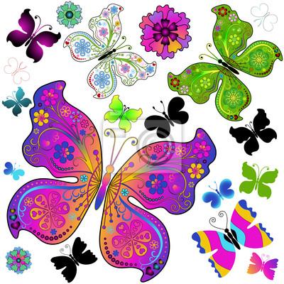 Set bunte und schwarze Schmetterlinge