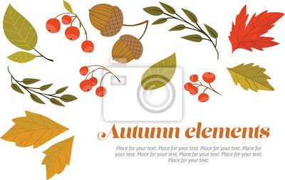Set der Blätter im Herbst, Beeren und Eicheln.