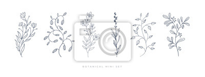 Sticker Set hand drawn curly grass and flowers on white isolated background. Botanical illustration. Decorative floral picture.