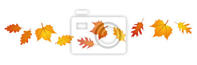 Sticker set of autumn leaves in the wind on white background vector illustration EPS10