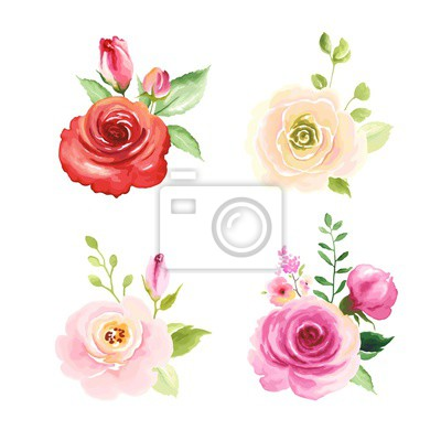 Set of floral decors with colorful flowers roses, green leaves and buds, vector illustration in watercolor style for your design.