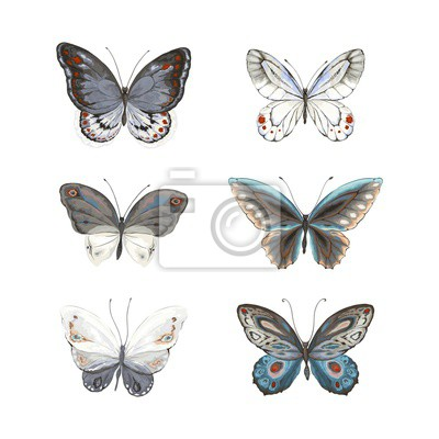 Set of flying butterflies blue, gray, turquoise, black and white colors. Vector illustration in vintage watercolor style.