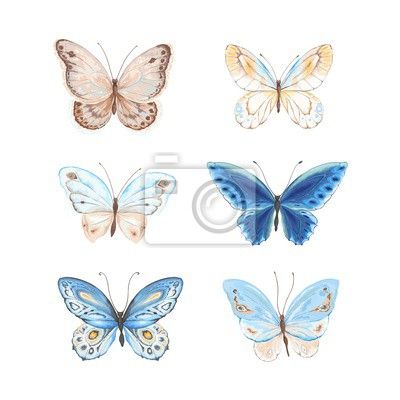 Set of flying butterflies blue, yellow and brown colors. Vector illustration in vintage style.