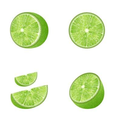 Sticker Set of Fruit Lime