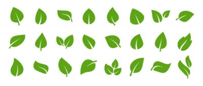 Sticker Set of green leaf icons. Green color. Leafs green color icon logo. Leaves on white background. Ecology. Vector illustration.