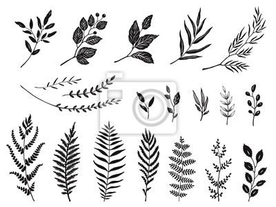 Set of leaves and branches silhouettes, hand drawn vector illustration.