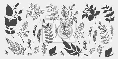 Sticker Set of leaves. Hand drawn decorative elements. Vector illustration