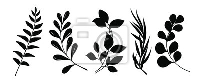 Sticker Set of leaves silhouette of beautiful plants, leaves, plant design. Vector illustration .