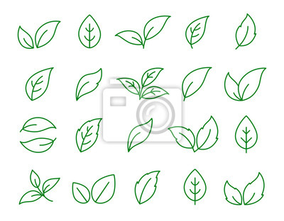 Sticker set of linear green leaf icons on white