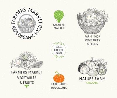 Set of organic food labels, symbols harvest and farmers market.
