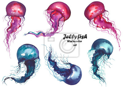 Set of red and blue jellyfishes. Watercolor illustration on white background. Isolated elements for design.