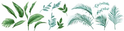 Sticker Set of tropical leaves for textile design