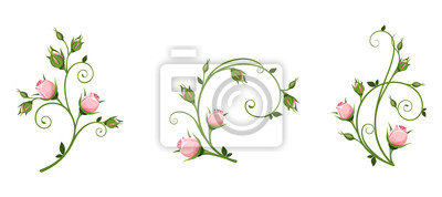 Sticker Set of vector decorative elements with pink rosebuds isolated on a white background.