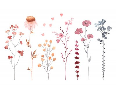 Set of watercolor branches with flowers, illustration design elements isolated on white background. Collection abstract flowers for textile, wallpapers, wedding, greeting or invitation card.