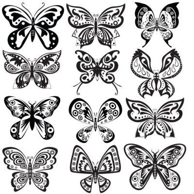 Set Schmetterling in schwarz und weiß