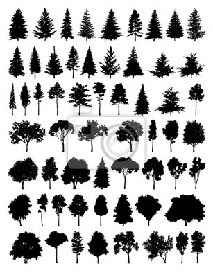 Set Silhouette Baum
