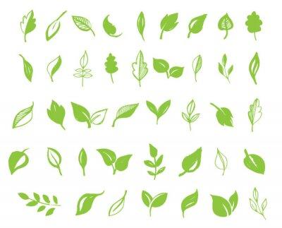 Sticker Set von Hand gezeichneten Blätter, grünes Blatt, Skizzen und Doodles von Blatt und Pflanzen, grüne Blätter Vektor-Sammlung