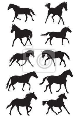 Set von Vektor schwarz Trab Silhouetten Pferde