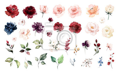 Sticker Set watercolor elements of roses collection garden red, burgundy flowers, leaves, branches, Botanic  illustration isolated on white background.