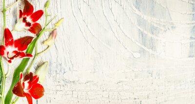 Sticker Shabby chic Hintergrund mit roten Orchidee Blumen, Ansicht von oben, Platz für Text.