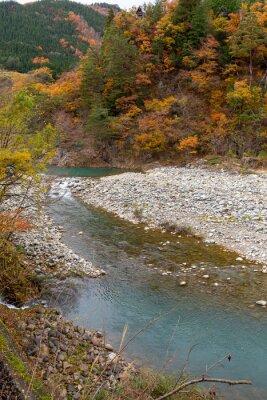 Sho river flows through Shirakawa-go village in autumn/fall season