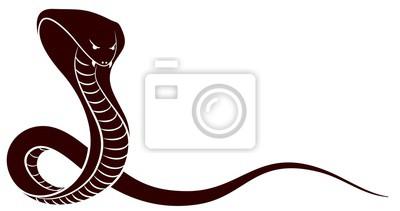 Sketch of a snake.