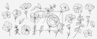 Sticker Sketch tropical flowers and leaves. Vector illustration