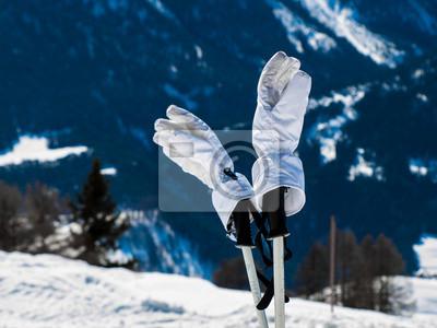 Sticker Ski-Handschuhe