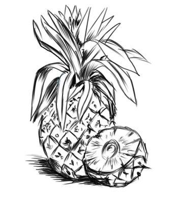 Sticker Skizze für pineaple