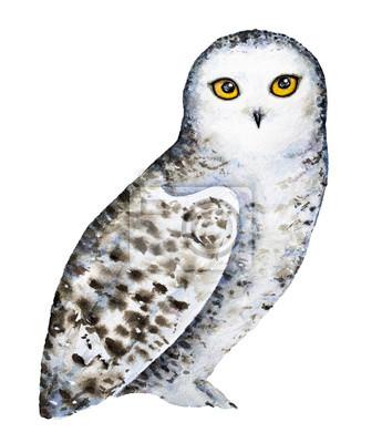 Snowy-polares Eulenporträt. Ganzkörper, stehend. Große runde gelb-orangefarbene Augen, schwarzer Schnabel, weißes Gefieder mit braunen Punkten und Flecken. Übergeben Sie die gezogene Aquarellillustrat