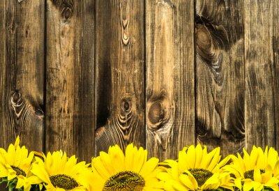 Sticker Sonnenblumen auf alten Holzbrettern. Blumen Hintergrund mit Kopie Raum