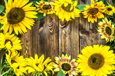 Sticker Sonnenblumen auf rustikalen Holz Hintergrund. Blumenhintergründe.