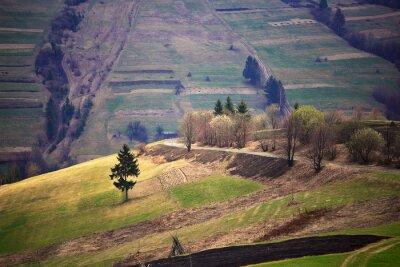 Sticker Sonniger Frühling im Bergdorf. Felder und Hügel