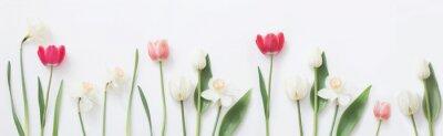 Sticker spring flowers on white background
