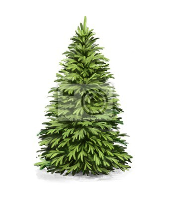Sticker spruce ,christmas tree, art illustration painted with watercolors isolated on white background