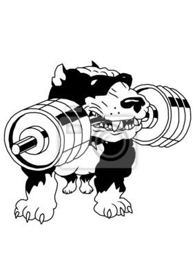 starke pit bull terrier